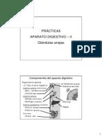 05 Guía Pract 5 Digestivo II
