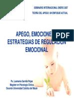 Apego, emociones y estrategias de regulación emocional.pdf