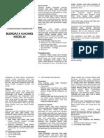 06. Folder Budidaya Kedelai