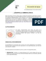 Fecundación y Embriologia2016