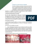 Alteraciones de La Estructura de La Dentina