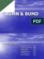 bumn-bumd(1)