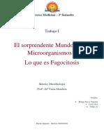 1 Trabalho Microbiologia