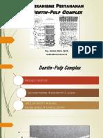 Mekanisme Pertahanan Dentin-pulpa Complex