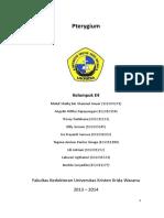 PLENO E4 - Pterygium