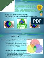 Gestión Ambiental Pama - Eia