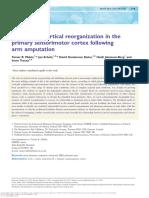 Makin 2015 - Reassessing Cortical Reorganization in the Primary Sensorimotor Cortex Following Arm Amputation
