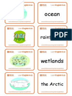 flashcards-environment.pdf