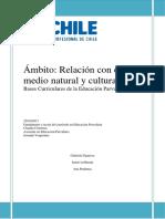 GRUPO 10 Informe (Bases Curriculares) Ambito%2c Relacion Con El Medio Natural y Cultural