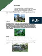 Parques Arqueologicos de Guatemala