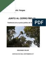 Junto Al Cerro Ñielol, Iván Ljubetic