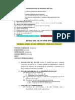 Estructura Del Informe Ppp i