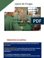 Principios de Cirugía 2017 4º - Copia