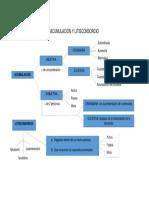 esquema acumulacion y litisconsorcio.docx