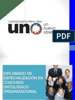 Coaching Ontologico Organizacional