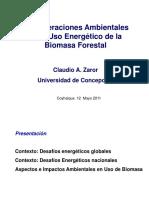 Consideraciones Ambientales en El Uso Energético de La Biomasa Forestal Coyhaique