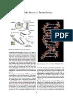 Ácido desoxirribonucleico.pdf