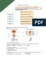 Control de Ciencias Naturales AP Reproductor