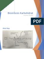 Biosintesis Karbohidrat - Risyad
