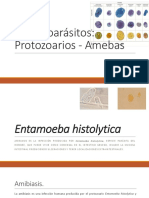Enteroparásitos amebas.pdf