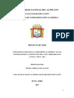Proyecto de Nelida Urubamba