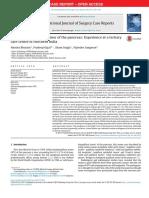 tumor 2.pdf