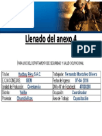 Llenado Del Anexo 4