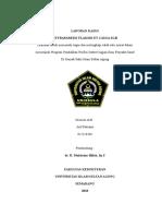 SGB 2 (Autosaved).doc