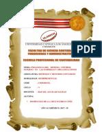 I.F. Influencia Del Sistema Control Interno en Las Empresas u Organizaciones