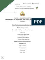 Fisiología Vegetal. Practica 4
