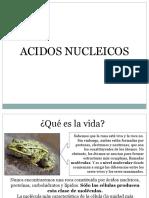 Sesion 1 Acidos Nucleicos