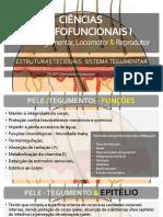 AULA 03 - PELE - Estruturas Anéxas - Pelo, Glândulas e Correlações