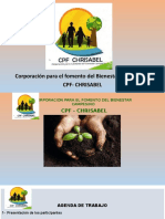 PRESENTACION CPF CHRISABEL