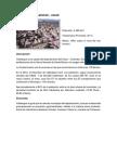 MUNICIPIO DE VALLEDUPAR.docx