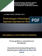 Embriología e Histología ginecoobstetricia