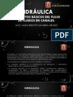 Hidráulica 1 (1).pdf