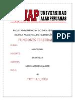 FUNCIONES-CEREBRALE1-2-LINDA[1]