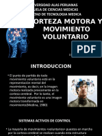 Movimiento Voluntario