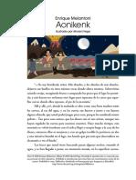 Aonikenk.pdf