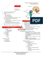 4.Central Nervous Systemfi