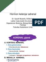 Hormon Adrenal