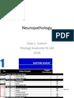 Neuropatologi_2018