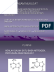ASAM-NUKLEAT(1).ppt