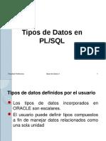 17 tipos de datos en pl.pdf