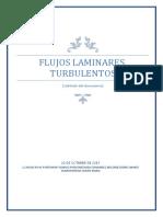 Flujos Laminares Turbulentos-1