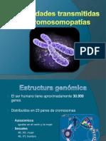 enfermedades transmitidas por cromosomas