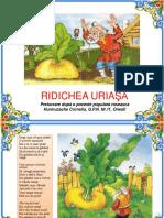 0_3_ridichea_uriasa