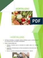 hortalizas-1