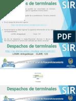 Despachos de Terminales