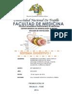 Histología Del Sistema Digestivo
